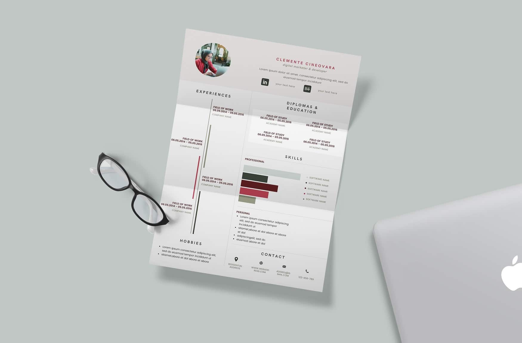 Free Canva Professional Resume Template